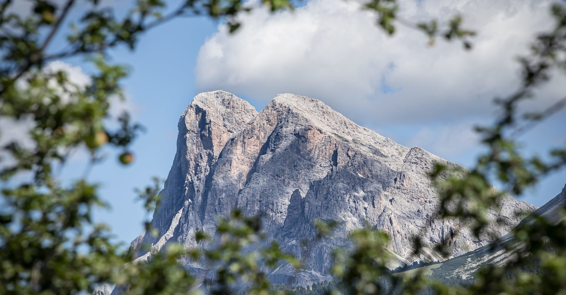 Hoferhof in Südtirol | Sommerurlaub auf der Plose im Eisacktal